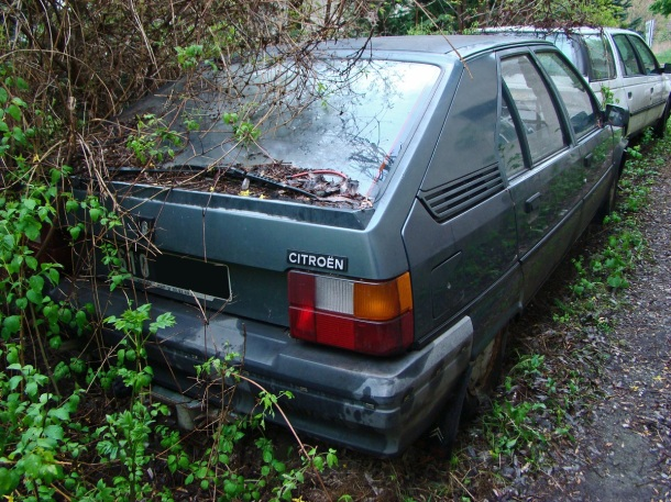 ranwhenparked-05-citroen-bx-1