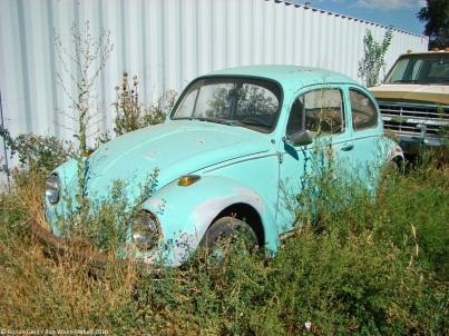 ranwhenparked-volkswagen-beetle-ut-1