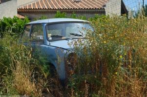 trabant-601-s-summer-1