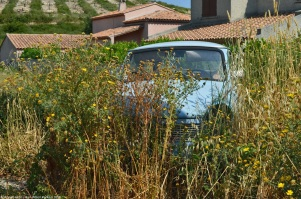 trabant-601-s-summer-2
