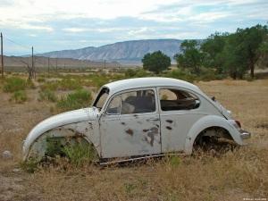 abandoned-volkswagen-beetle-5