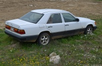 mercedes-benz-250d-4