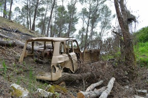 Abandoned in the countryside: Renault 4 TL