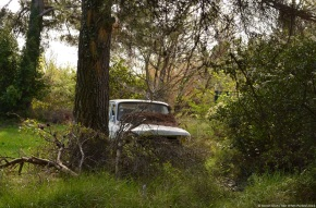 Abandoned in the countryside: Renault 6
