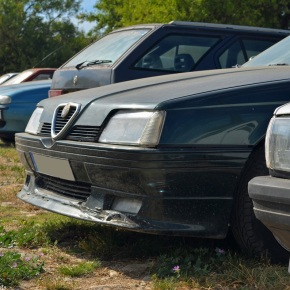 Endangered species: Alfa Romeo 164