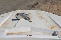 ranwhenparked-boat-6