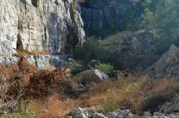 quarry-view-2