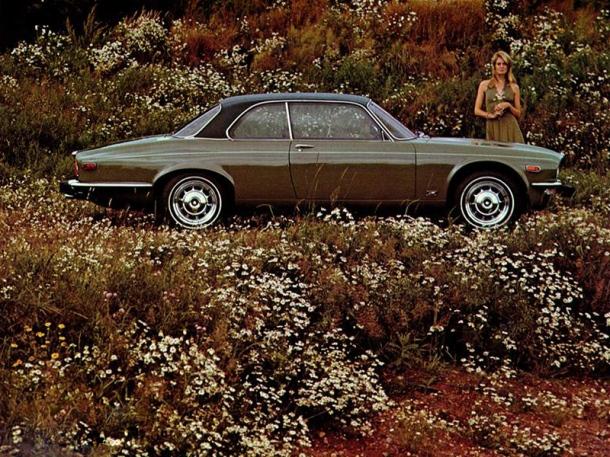 jaguar-xj12c-brown