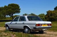 1979-mercedes-benz-300d-w123-ranwhenparked-1