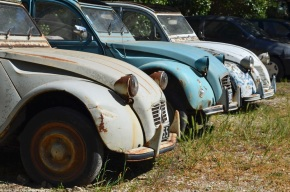 Rust in peace: a trio of Citroën 2CVs