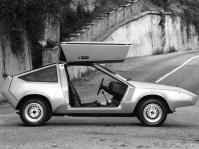 ford-corrida-3