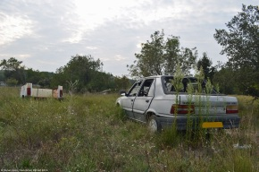 Rust in peace: Peugeot309