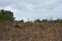 ranwhenparked-sardinia-view-3