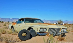 ranwhenparked-american-southwest-buick-riviera-1
