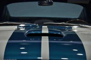 ranwhenparked-laas-ford-shelby-mustang-gt350-12