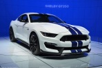 ranwhenparked-laas-ford-shelby-mustang-gt350-15