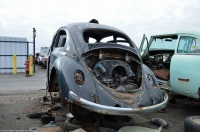 volkswagen-beetle-pns-1