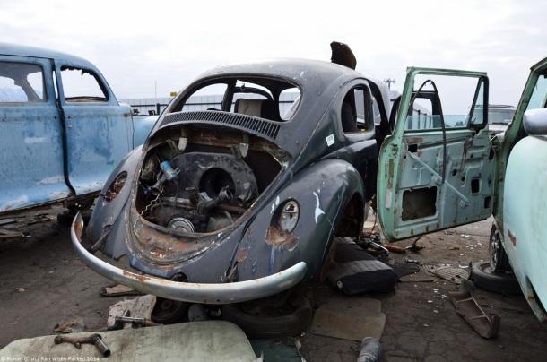 volkswagen-beetle-pns-7