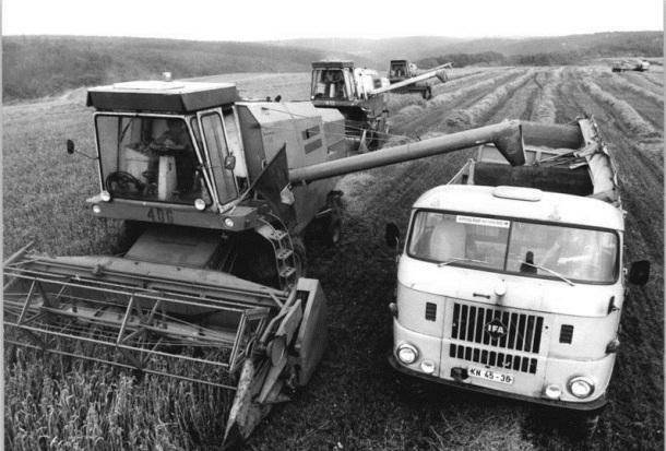 LPG Braunschwende, Getreideernte
