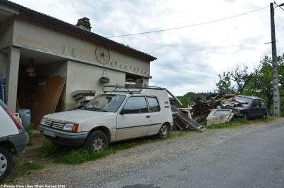 ranwhenparked-peugeot-205-gruau-1