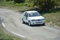 ranwhenparked-vernegues-course-de-cote-peugeot-205-1