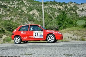 ranwhenparked-rally-laragne-citroen-saxo-2