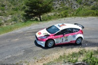 ranwhenparked-rally-laragne-ford-fiesta-1