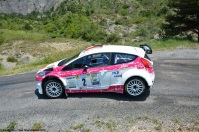 ranwhenparked-rally-laragne-ford-fiesta-2