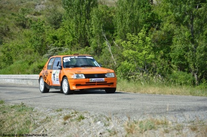 ranwhenparked-rally-laragne-peugeot-205-2