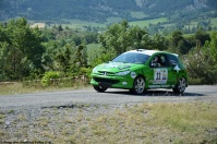 ranwhenparked-rally-laragne-peugeot-206-1