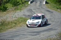 ranwhenparked-rally-laragne-peugeot-206-2