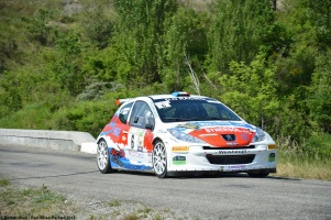 ranwhenparked-rally-laragne-peugeot-207-2