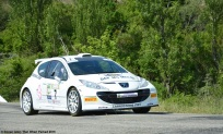ranwhenparked-rally-laragne-peugeot-207-3