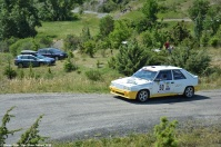 ranwhenparked-rally-laragne-renault-11-turbo-2