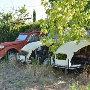 Rust in peace: three Citroën 2CVs