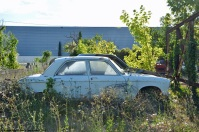 ranwhenparked-peugeot-204-white-4