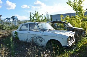 ranwhenparked-peugeot-204-white-5
