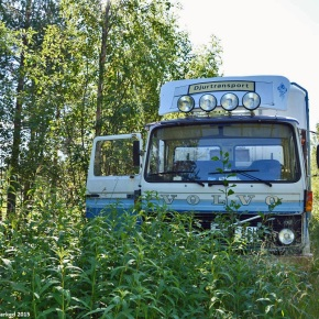 Rust in peace: Volvo F 408