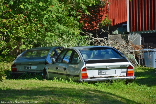 ranwhenparked-sweden-citroen-cx-1