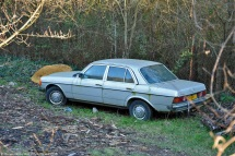 ranwhenparked-mercedes-benz-w123-230e-mossy-1