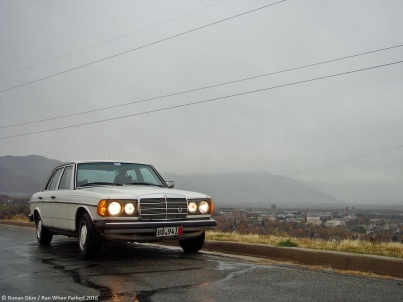 ranwhenparked-mercedes-benz-w123-300d-1979-1