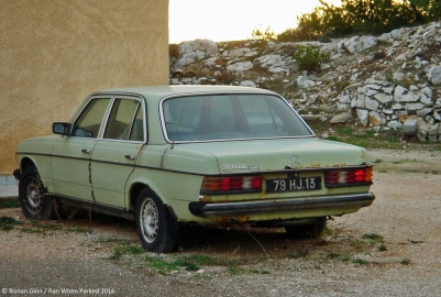 ranwhenparked-mercedes-benz-w123-300d-green-sea-1