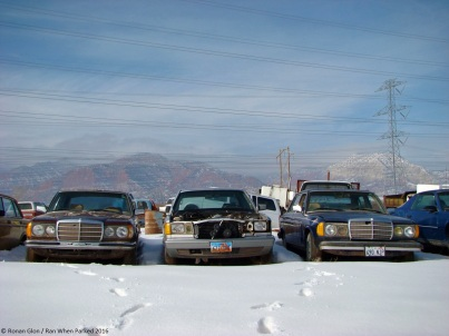 ranwhenparked-mercedes-benz-w123-junkyard-winter-1