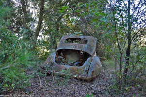 ranwhenparked-renault-4cv-woods-1
