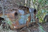 ranwhenparked-renault-4cv-woods-12