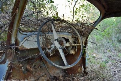 ranwhenparked-renault-4cv-woods-14