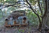 ranwhenparked-renault-4cv-woods-15