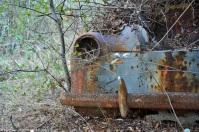 ranwhenparked-renault-4cv-woods-16