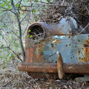 Rust in peace: Renault 4CV