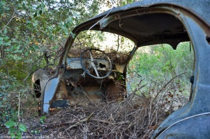ranwhenparked-renault-4cv-woods-4